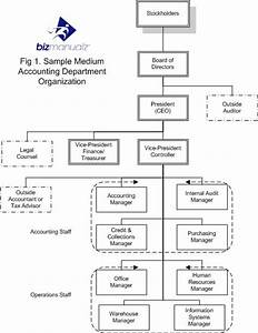 Chart Auditor Job Description What Is An Accounting Department Organization Chart