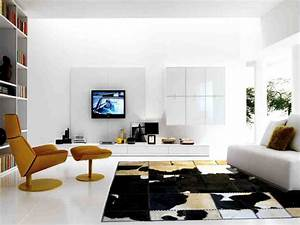 Modern Rugs for Living Room - Decor IdeasDecor Ideas