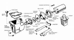 hayward northstar diagram hayward free engine image for With ao smith pool pump motor wiring diagram as well cal spa wiring diagram