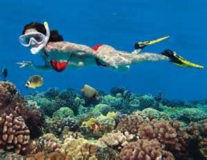Key West Snorkeling Beach