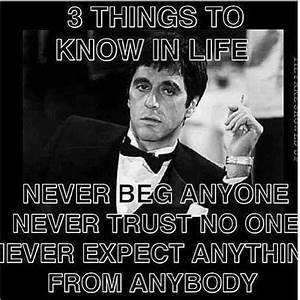 The Mafia Boss on | Scarface quotes, Truths and Movie