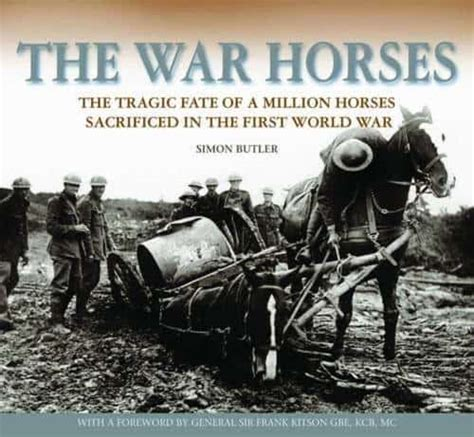 horses war horse animals million during pulling memorial artillery were mud ww1 cart facts donkeys wwi tribute courage american front