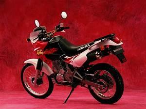 Honda Dominator 650 Fiche Technique : nx 650 dominator honda galeries photos motoplanete ~ Medecine-chirurgie-esthetiques.com Avis de Voitures
