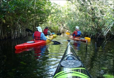 Top Everglades Boat Tours by The Top 10 Things To Do Near Speedy S Airboat Tours