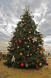 crystal cove at newport coast christmas tree lighting festivities at the beachlive orange county