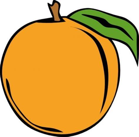 cartoon orange   clip art  clip art  clipart library