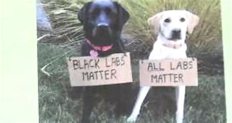 san francisco police union black labs matter video