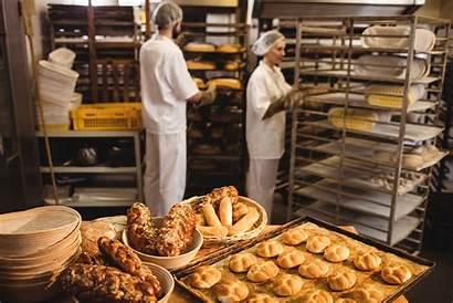 Bakery Equipment Commercial Bread Wholesale Aulds Pieces