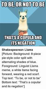 THATSACOPULAAND ITS NEGATION Shakespearean Llama Picture ...