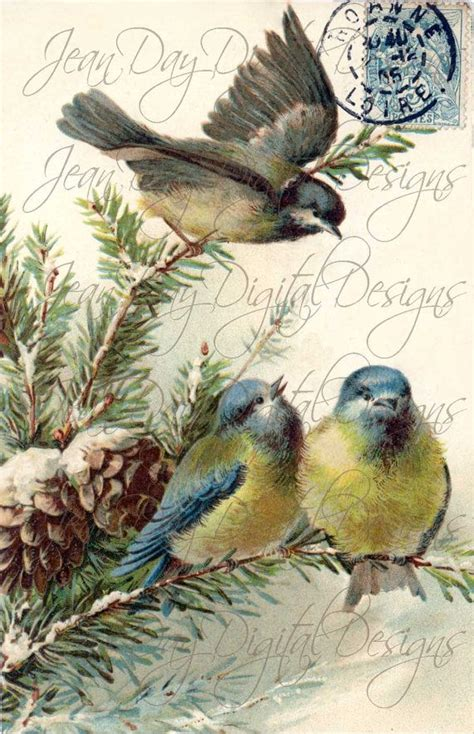 french blue birds stamp french postcard gift tag