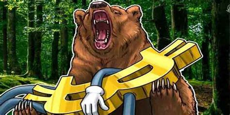 Donations :please donate for this free content it takes a lot of research to put theses videos together god bless! Crypto Bear Markets: The Best Teachers. - Cryptokek