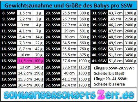 Gewichtszunahme 23 ssw