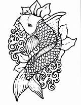 Koi Coloring Fish Pages Sheet sketch template