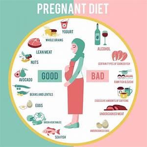 Alcohol Pregnant Stock Illustrations  U2013 175 Alcohol