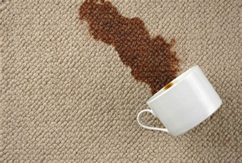 How To Clean Stains, Spills And Odors? Carpet Cleaners Chattanooga Tn Carpets Of Dalton Allbright And Rug Institute Approved Vacuums Burlington Syon 5 Cleaner Self Adhesive Squares Bismarck Nd