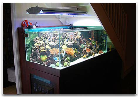 l aquarium du 112 carats