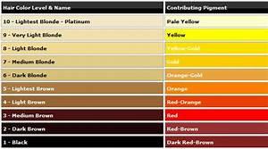 Modern Bohemian Lifestyle: Remove Brassy Orange-Yellow ...