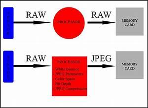 Digital Camera File Formats  Raw And Jpeg