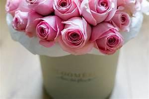 Blumen In Der Box : gewinne blumenboxen von bloom sie ~ Orissabook.com Haus und Dekorationen