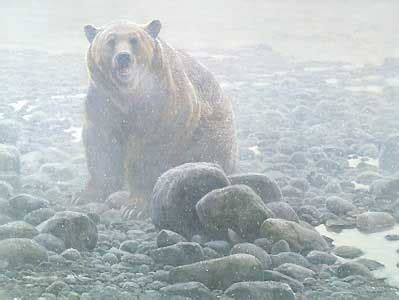 robert bateman   season grizzly artusacom