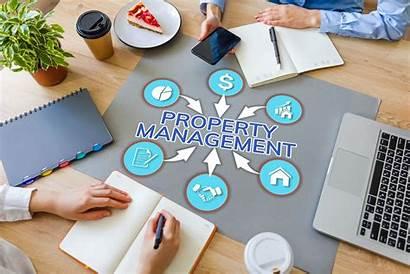Management Marketing Manager Grow