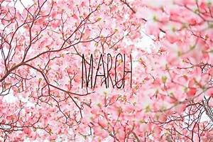 Welcome March | One Use Fashion