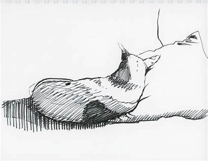 Drawing Pen Drawings Pens Ink Format Type