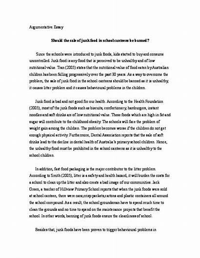 Essay Junk Argumentative Academia