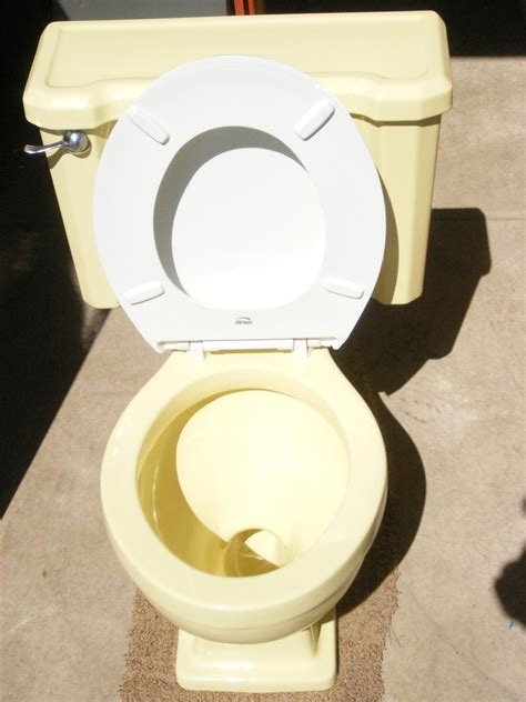 Vintage Yellow Crane Toilet and Sink