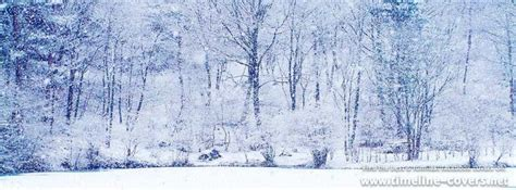 winter cover winter facebook covers related keywords winter facebook