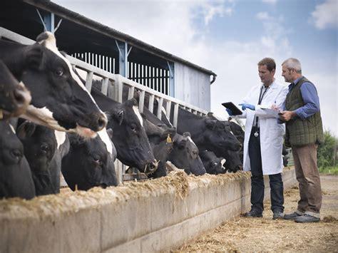dairy farmer job description salary skills