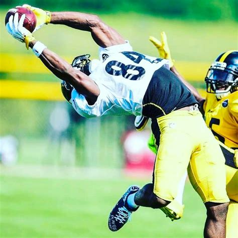 Pin by Tj on football | Pittsburgh steelers, Steelers ...