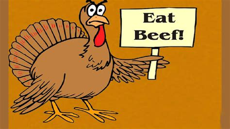 thanksgiving day  funny hd thanksgiving wallpapers