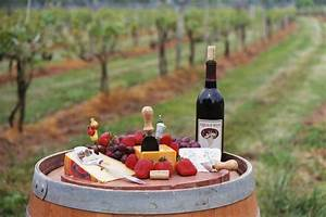 Private Tasting with Vineyards & Winery Tour