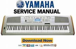 Yamaha Dgx-500 Keyboard Service Manual  U0026 Repair Guide