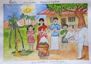 Pongal Festival Drawing For Kids   www.pixshark.com ...