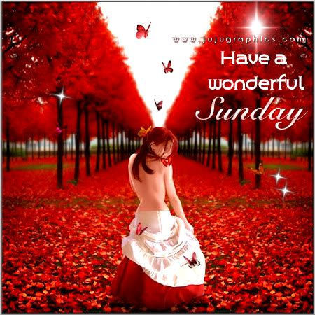 wonderful sunday  graphics quotes comments