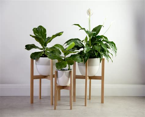 Make Your Own Timber Pot Stands