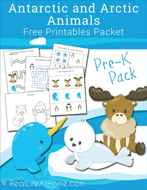 free antarctic and arctic animals printables packet for 857 | Arctic Animals