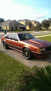 1979 MUSTANG 5.0 for sale in DeLand, Florida, United States for sale: photos, technical ...