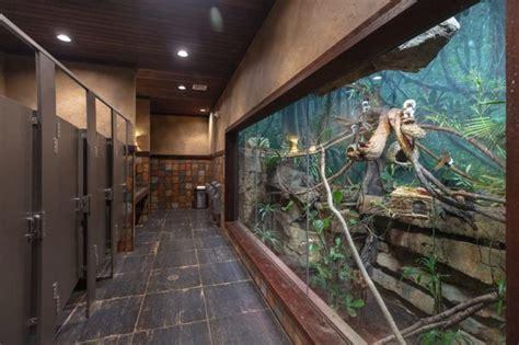 nashville zoo crowned  prestigious honor  americas