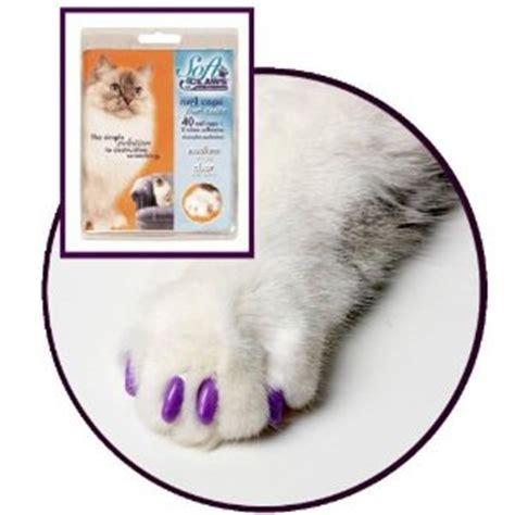 faux ongles pour griffes de chats fini le canap 233 trou 233 par minou
