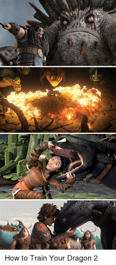 0 00 How To Train Your Dragon 2  Meme On Sizzle