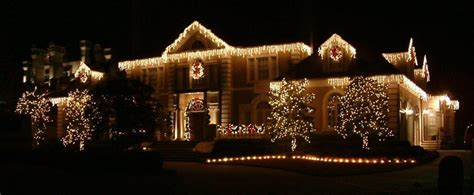Licensed And Insured Christmas & Holiday Decoration
