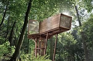 Hermoso proyecto de casa del arbol con minimo impacto for Hermoso proyecto de casa del arbol con