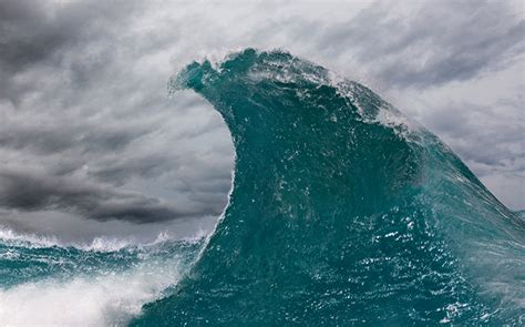 preparing canada   fintech tsunami scotiabank