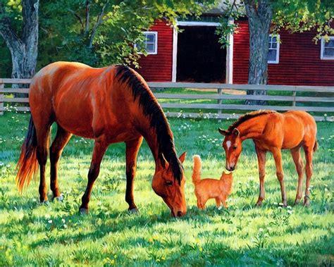 horses barn horse clayton weirs persis cat kitten rural young paintings pourleplaisir72 hung aspirations september summer bienvenue bonne visite servez
