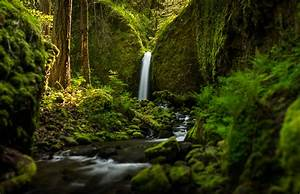 Oregon waterfall forest river mood wallpaper