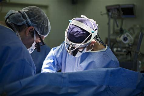 cardiothoracic surgery services monash heart
