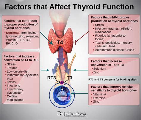 strategies  beat hypothyroidism naturally